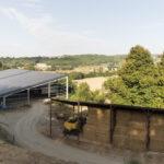 Capannoni per il fieno sulla route de Digne-Forcalquier-Davide Curatola Soprana