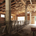 L'interno della Stalla -Sampeyre Borgata Roccia- Isabella Sassi Farìas