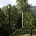 Il bosco incantato- Ostana- Davide Curatola Soprana