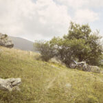 Motocyclette du berger pour les déplacements en montagne. Sampeyre. Alpage Raie. +2100 m altitude.Alessandro Guida