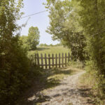 Chemin sur Le Buzon. Romette. Alessandro Guida