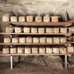 Production du fromage Castelmagno d'alpage.Castelmagno. Borgata Valliera. Isabella Sassi Farìas