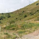 Point de arrêt pour le pâturage sur le nouveau chemin. Castelmagno. Borgata Valliera. Davide Curatola Soprana
