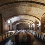 La cave à vin. Alba. Azienda vitivinicola Ceretto. Isabella Sassi Farìas