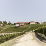 L'Acino et les vignobles. Alba. Azienda vitivinicola Ceretto. Isabella Sassi Farìas