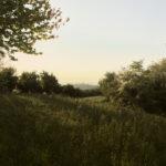 Vue sur les champs. Cigliè. Tout près de la chapelle San Giorgio. Alessandro Guida