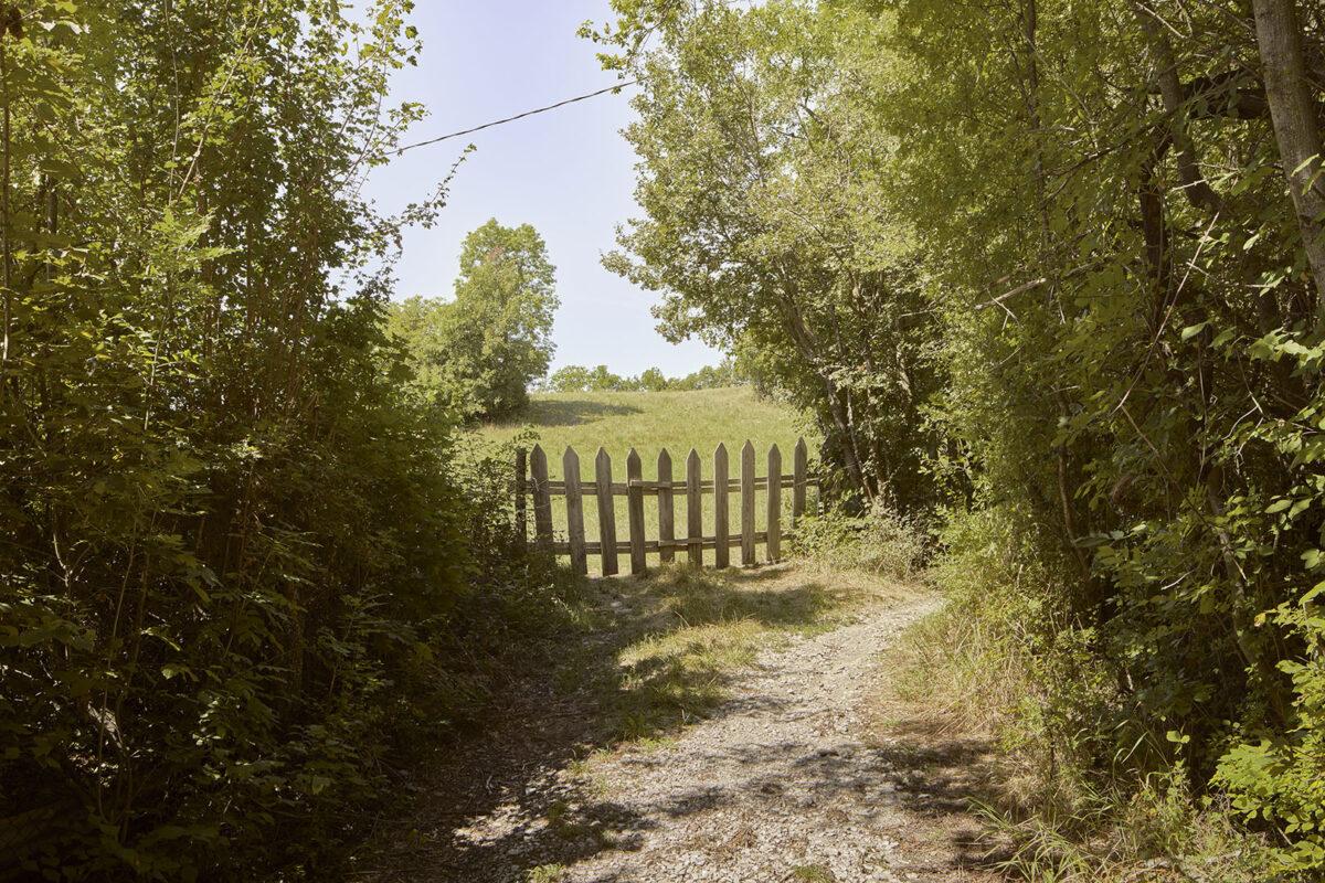 Sentiero lungo Le Buzon- Romette- Alessandro Guida